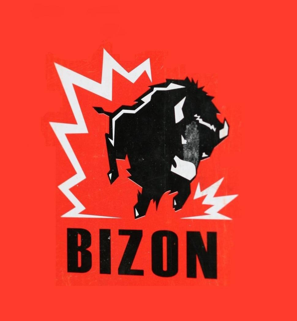 Логотип компании БИЗОН